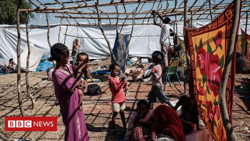 Ethiopia's Tigray crisis: UN 'alarmed' by treatment of Eritrean refugees