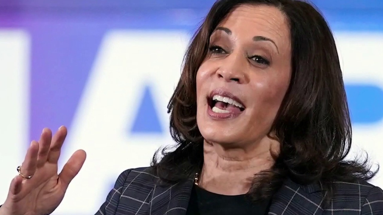 Kamala Harris should have visited border, not Milwaukee, Sen. Johnson and other Wisconsin Republicans say