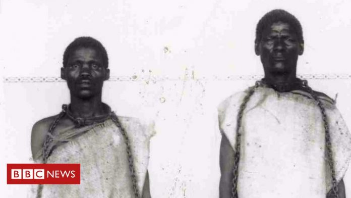 Viewpoint: Why Germany's Namibia genocide apology is not enough