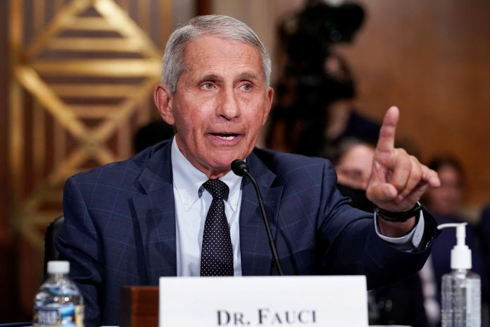 Fauci says vaccinated people 'might want to consider' wearing masks indoors